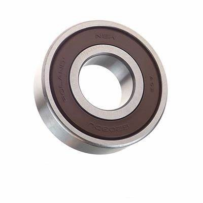 NTN NSK NMB SKF Timken Koyo Deep Groove Ball Bearing for Electric Bikes 6309 6010 6300 6206 6301 6204 6902 600 Zz1009 R8zz 16101/W64 61892