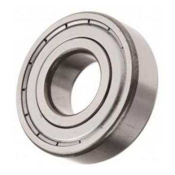 IKO SKF Ball Bearing Roller Bearing Needle Bearing HK1412 HK0306tn HK1010 HK1012 HK1210 HK1212