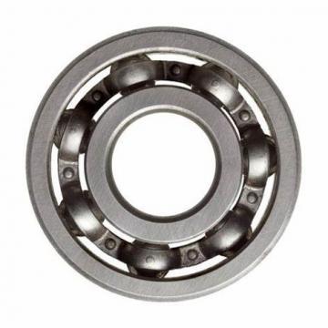 SKF Bearing Nn3020mbkre44cc1p4 Nnf5008adb-2lsv
