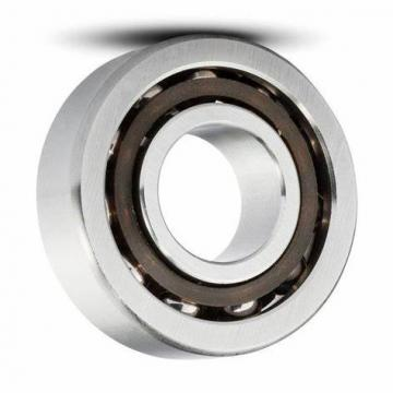 Square Flange Stainless Steel Bearing Sucp Sucfl Sucf204 205 206 207 Pillow Block Bearing NSK SKF FAG Bearings