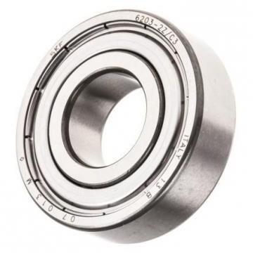 SKF/NSK/NTN/Koyo Bearing (NA 6901 NA 6902 NA 6903 NA 6904 NA 6905 NA 6906 NA 6907 NA 6908 NA 6909 NA 6910) Needle Roller Bearing