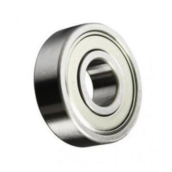 OEM Brand Ball Screw Linear Actuator Sfu2525 25mm Lead Screw #1 image