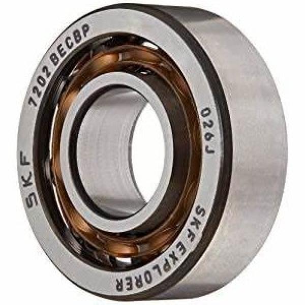 NSK NTN Sealed Double Row Spherical Roller Bearings BS2-2205 2206 2207 2208 2209 2210-2CS #1 image